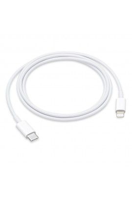 Cavo Appple da USB-C a Lightning 1 m