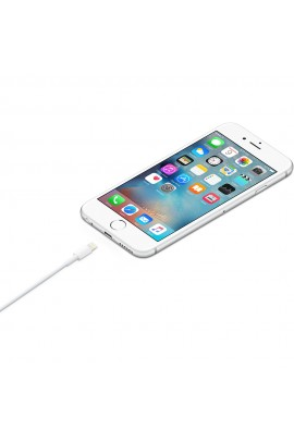 Câble Apple Lightning vers USB 2 m